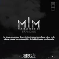 Fly Mastermind – Branding – Carlos Muñoz